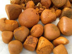 Good Quality Ox Gallstones